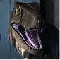 Raptor's picture